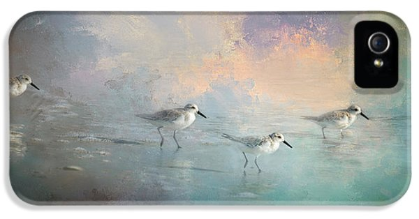 Sandpiper iPhone 5s Case - Walking Into The Sunset by Marvin Spates