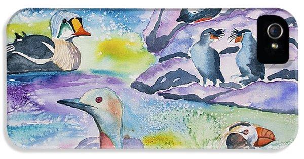 Watercolor - Alaska Seabird Gathering IPhone 5s Case