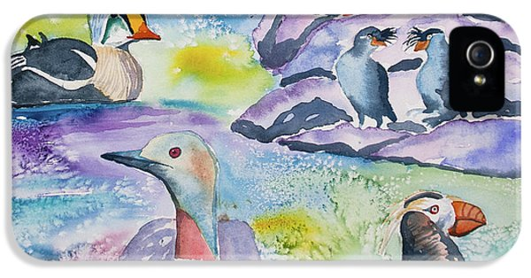 Auklets iPhone 5s Case - Watercolor - Alaska Seabird Gathering by Cascade Colors
