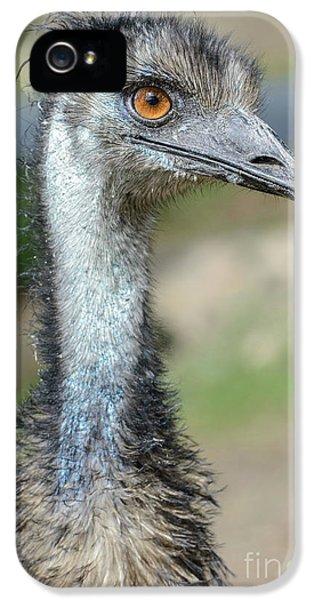 Emu 2 IPhone 5s Case
