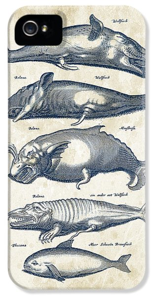 Whale Historiae Naturalis 08 - 1657 - 41 IPhone 5s Case by Aged Pixel