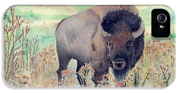 Where The Buffalo Roams IPhone 5s Case by Arline Wagner