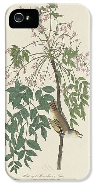 Flycatcher iPhone 5s Case - White-eyed Flycatcher by Dreyer Wildlife Print Collections