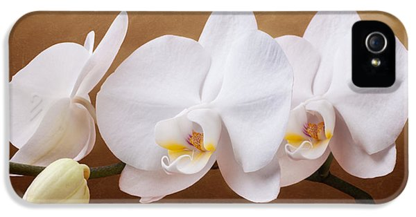 Orchid iPhone 5s Case - White Orchid Flowers And Bud by Tom Mc Nemar