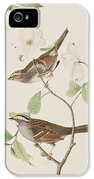 White Throated Sparrow IPhone 5s Case by John James Audubon