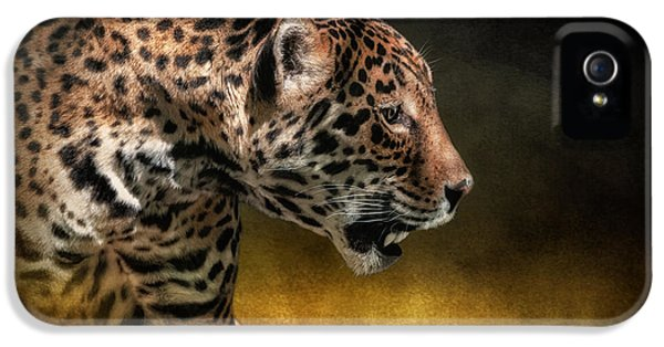 Who Goes There IPhone 5s Case by Lois Bryan