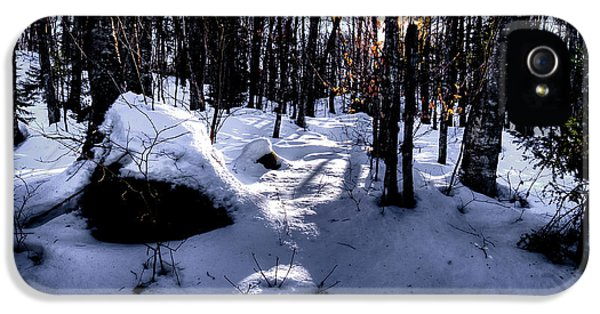 IPhone 5s Case featuring the photograph Winters Shadows by David Patterson