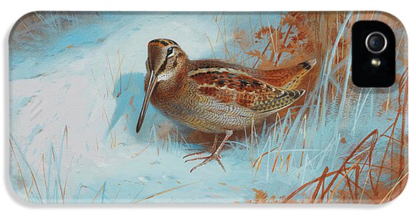 Woodcock iPhone 5s Case - A Woodcock In The Snow by Archibald Thorburn