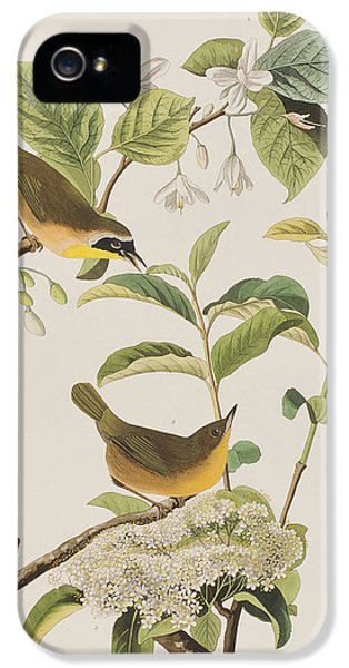 Yellow-breasted Warbler IPhone 5s Case by John James Audubon