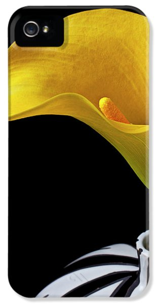 Lily iPhone 5s Case - Yellow Calla Lily In Black And White Vase by Garry Gay