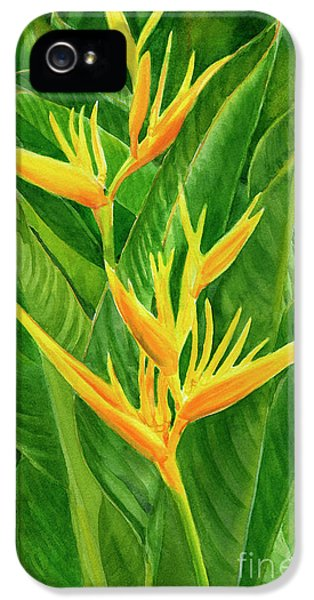 Parakeet iPhone 5s Case - Yellow Orange Heliconia With Leaves by Sharon Freeman