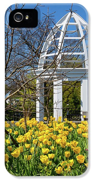 Tulip iPhone 5s Case - Yellow Tulips And Gazebo by Tom Mc Nemar