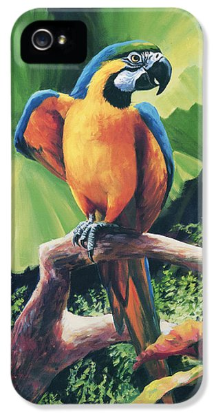 You Got To Be Kidding IPhone 5s Case by Laurie Hein
