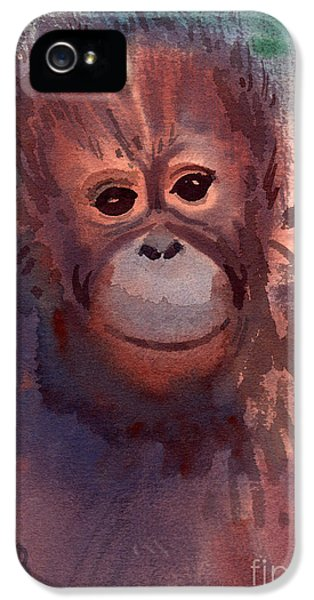 Young Orangutan IPhone 5s Case by Donald Maier