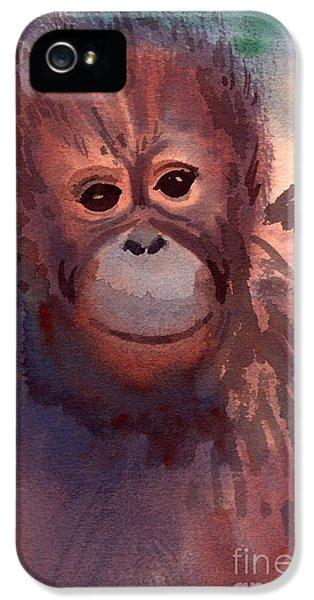 Young Orangutan IPhone 5s Case by Donald Maier