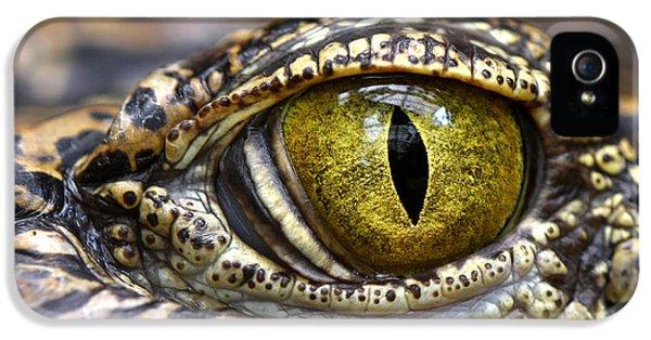 Macro iPhone 5s Case - Alligator Or Crocodile Animals Eyes by Dangdumrong