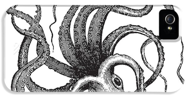 Etching iPhone 5s Case - Common Octopus Octopus Vulgaris by Morphart Creation