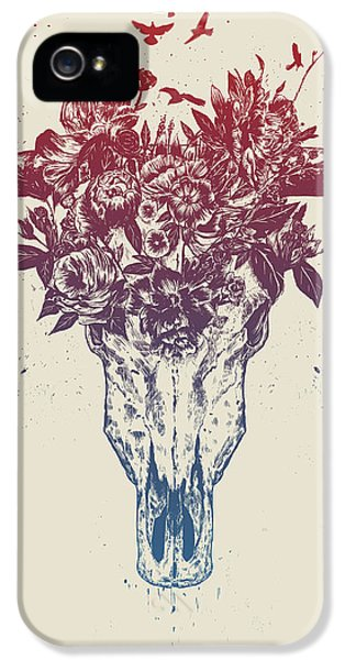 Bull iPhone 5s Case - Dead Summer by Balazs Solti