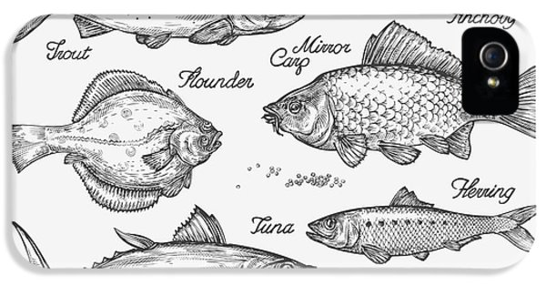 Etching iPhone 5s Case - Hand Drawn Fish. Sketch Trout, Carp by Ava Bitter