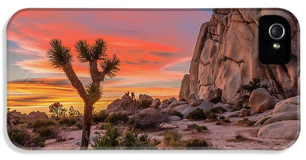 Landscapes iPhone 5s Case - Joshua Tree Sunset by Peter Tellone