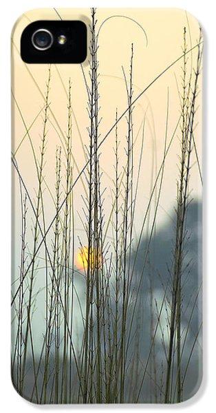 Landscapes iPhone 5s Case - morning Star by Ravi Bhardwaj