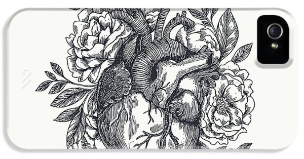 Etching iPhone 5s Case - Valentines Day Card. Anatomical Heart by Adehoidar