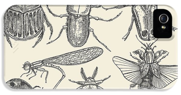 Etching iPhone 5s Case - Vector Set Insects In Vintage Style by Horg