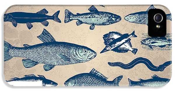 Etching iPhone 5s Case - Vintage Fish Drawings Set, Vector by Mila Petkova