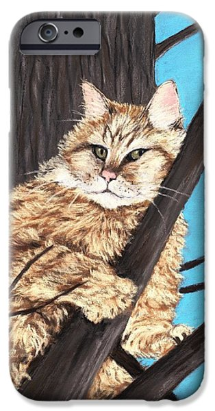 Pastel iPhone Cases -  Cat on a Tree iPhone Case by Anastasiya Malakhova