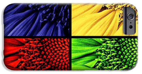 Sunflower Seeds iPhone 6 Case -  Sunflower Medley by Mark Kiver