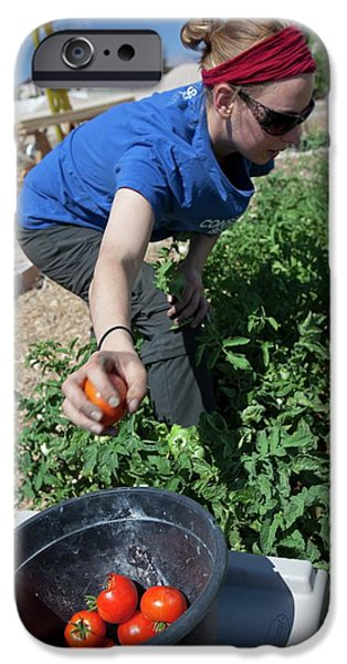 Donation iPhone 6 Case - Community Garden Volunteer by Jim West