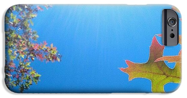 Bright iPhone 6 Case - Hello Autumn by CML Brown