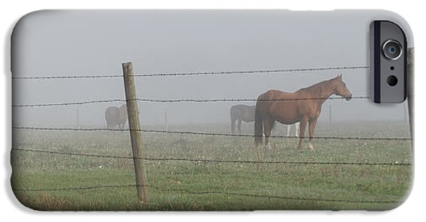Fabulous Gifts iPhone Cases - Horse Pasture iPhone Case by Paulette B Wright