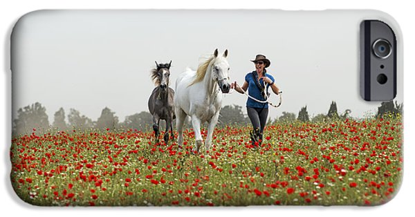 Three At The Poppies' Field... 3 IPhone 6 Case by Dubi Roman