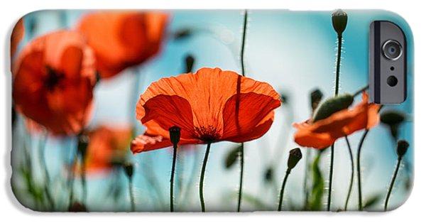 Red iPhone 6 Case - Poppy Meadow by Nailia Schwarz