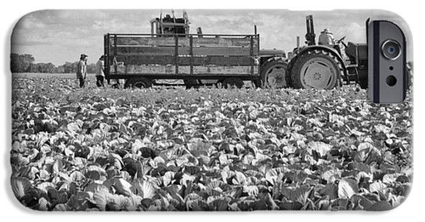 IPhone 6 Case featuring the photograph On The Farm by Ricky L Jones