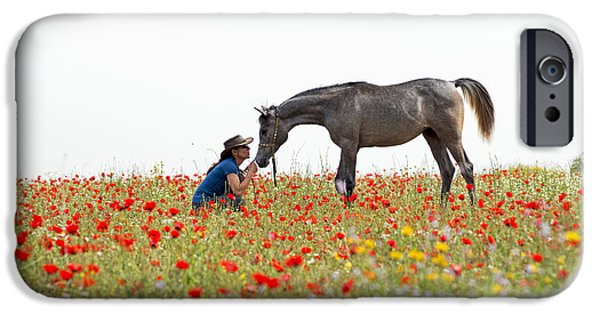 Three At The Poppies' Field... 4 IPhone 6 Case by Dubi Roman