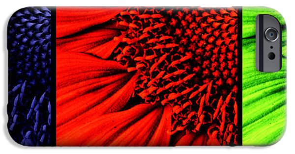 Sunflower Seeds iPhone 6 Case - 3 Tile Sunflower Colors by Mark Kiver