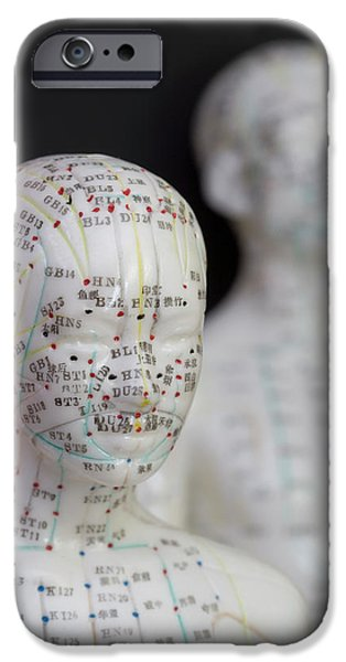 Acupuncture Point iPhone 6 Cases   Fine Art America