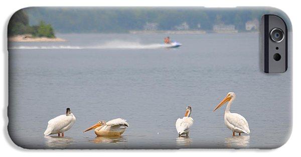 Jet Ski iPhone 6 Case - 4 Pelicans by Jeremy Evensen