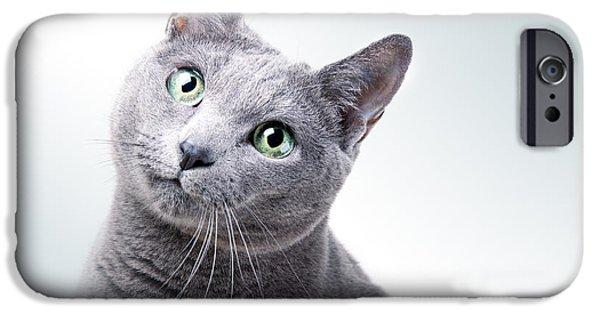Russian Blue Cat IPhone 6 Case
