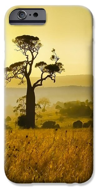 iPhone 6 Case - A Boab Sunrise by Holly Kempe