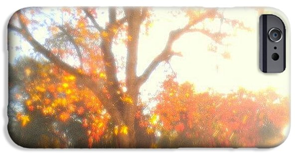 Light iPhone 6 Case - A Morning Dream by CML Brown