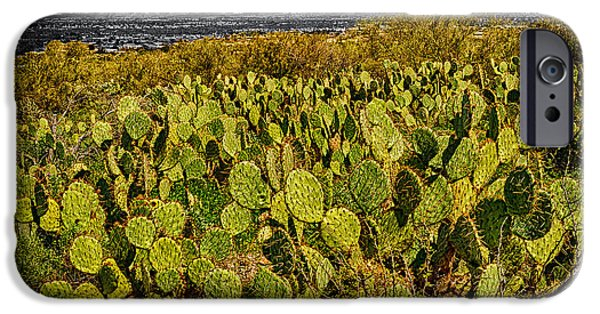IPhone 6 Case featuring the photograph A Prickly Pear View by Mark Myhaver