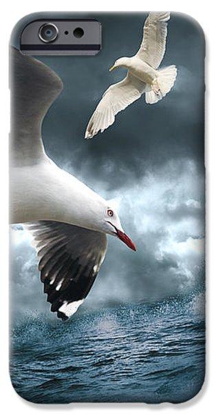 Albatross IPhone 6 Case by Linda Lees