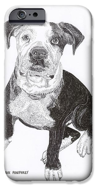 American Bull Dog as a PUP iPhone Case by Jack Pumphrey
