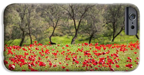 At Ruchama Forest Israel IPhone 6 Case by Dubi Roman