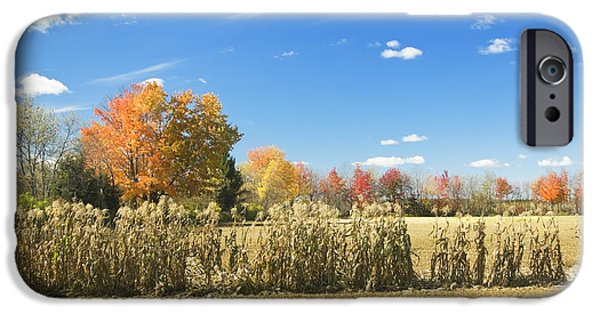 Corn iPhone Cases - Autumn Corn Field After Harvest In Maine Photo iPhone Case by Keith Webber Jr