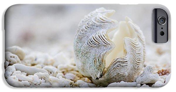 Pacific Ocean iPhone 6 Case - Beach Clam by Sean Davey
