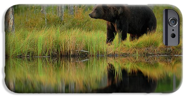 Brown iPhone 6 Case - Bear And Fish *** by Assaf Gavra